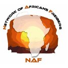 Logo Network of Africans Freiberg