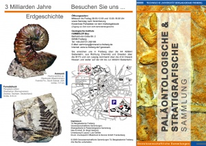 Flyer about the Paleontological and Stratigraphical Collection