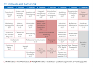 Studienablaufplan Business and Law